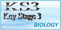 Key Stage 3 Biology